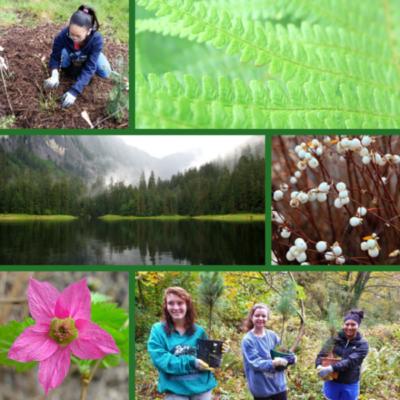 Happy Native Plant Appreciation Week!