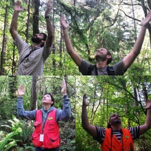 Seward arms up