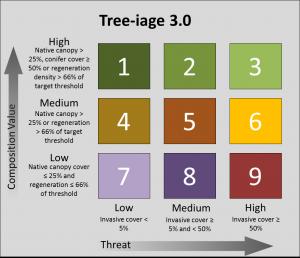 Treeiage 3.0