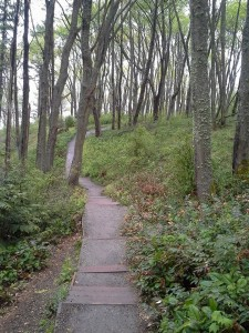 Disco South Bluff Stairway