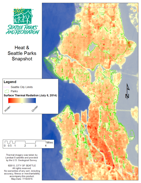 When Seattle Heats up, its Forests Stay Cool