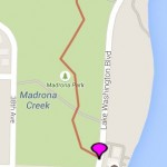 Madrona Stairway