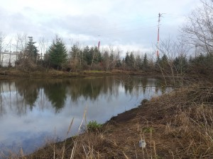 Herring's House Park on the Duwamish River