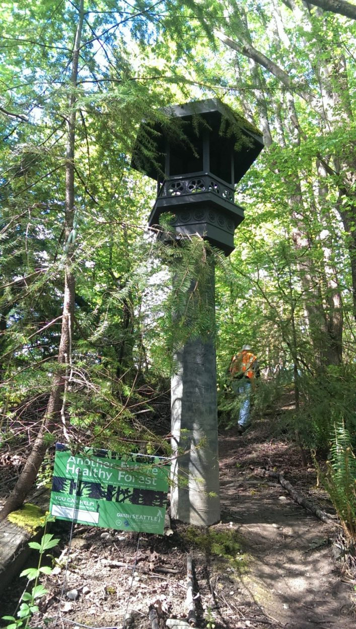 Forest Stewards Benefit from Behind the Scenes Access