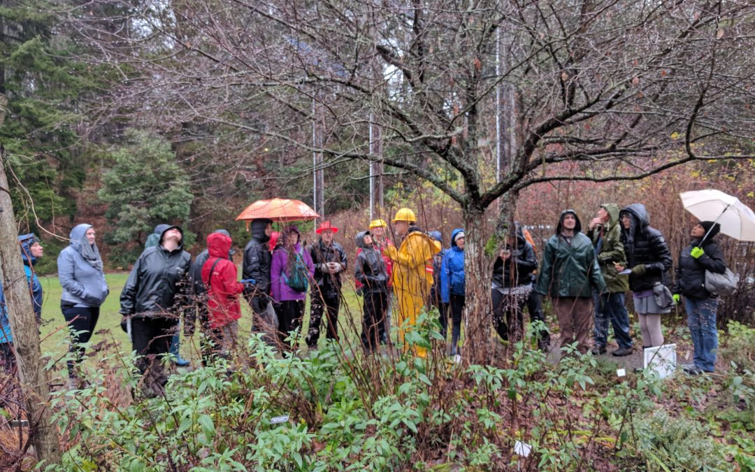 Forest Stewards Learn in the Classroom and in the Field