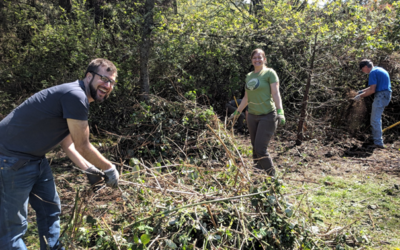 Five New Teams – All Master Native Plant Stewards