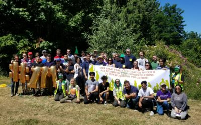 Request for Proposals – Volunteer Coordination