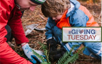 Giving Tuesday: Give Back to Seattle's Parks!