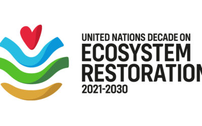 Welcome to The UN Decade On Ecosystem Restoration